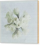 Daffodil Blue Wood Print by Beverly Cazzell