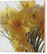 Daffodil Bouquet Wood Print