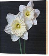 Daffodil Flowers Still Life Wood Print