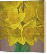 Daffodils 10 Wood Print