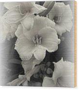 Daffodils Emerge Wood Print