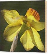 Daffodils Grace Wood Print