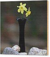 Daffodils In Black Amethyst 2 Wood Print