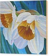 Daffodils Narcissus Wood Print