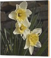 Daffs Wood Print