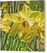 Daffy Dills Wood Print