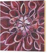 Dahlia - Closeup 2 Wood Print