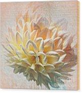 Dahlia Art Wood Print