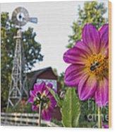 Dahlia Bee And Windmill Wood Print
