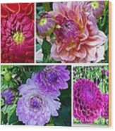 Dahlia Best Collage Wood Print
