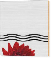 Dahlia Flower And Wavy Lines Triptych Canvas 1 - Red Wood Print by Natalie Kinnear