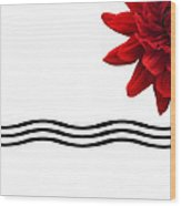 Dahlia Flower And Wavy Lines Triptych Canvas 3 - Red Wood Print by Natalie Kinnear