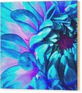 Dahlia In Pastel Wood Print by James Hammen
