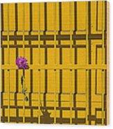 Dahlia In Yellow Gate Wood Print