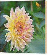 Dahlia Magic Wood Print