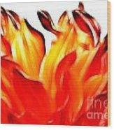 Dahlia On Fire Wood Print
