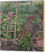Dahlias And Chickens Wood Print