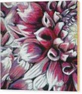 Dahlias In Pastel Wood Print