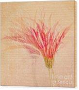 Daintiness Wood Print