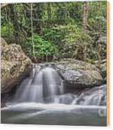 Daintree Rainforest Wood Print