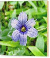 Dainty Blue Wood Print