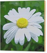 Daisey Flower - Looks Like A Painting Wood Print