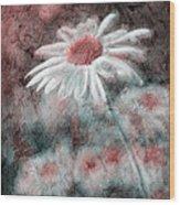 Daisies ... Again - P11ac2t1 Wood Print