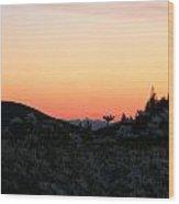 Daisies And Sunrise Wood Print