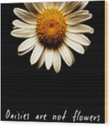 Daisies Are Not Flowers Fractal Version Wood Print