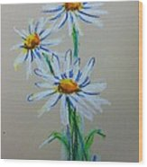 Daisies For You Wood Print