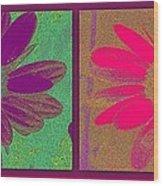 Daisies Purple Pink Wood Print