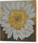 Daisy-2 Wood Print