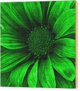 Daisy Daisy Neon Green Wood Print