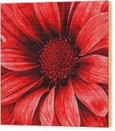 Daisy Daisy Neon Red Wood Print