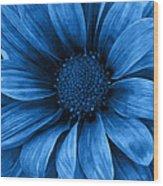 Daisy Daisy Pure Blue Wood Print