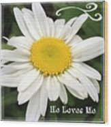 #daisy #doodle #helovesme #flower Wood Print