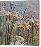 Daisy Dreams Wood Print