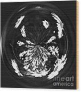 Daisy Globe Wood Print
