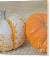 Daisy Gourd And Pumpkin Wood Print