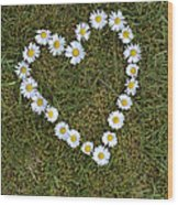 Daisy Heart Wood Print