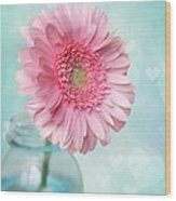 Daisy Love Wood Print by Amy Tyler