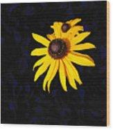 Daisy On Dark Blue Wood Print