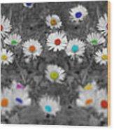 Daisy Rainbow Wood Print