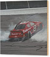Dale Earnhardt Junior Victory Burnout Wood Print