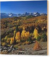 Dallas Divide Fall Colors Wood Print
