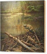Dam Beavers Wood Print