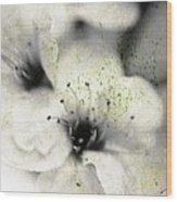 Damaged Blooms Wood Print