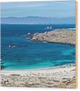 Damas Island Beach Wood Print