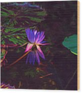 Dance Of The Night Lily Wood Print