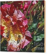 Dancing Bees And Wild Roses Wood Print